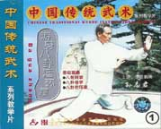 Bagua with Sun Zhi Jun Fundamentals